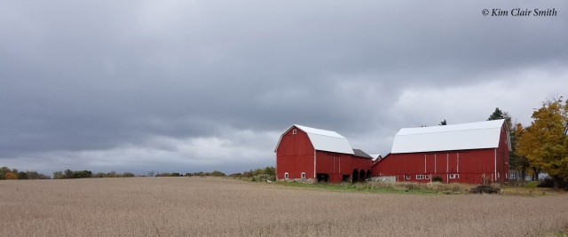 Red barns in crane country - Jackson Michigan w sig