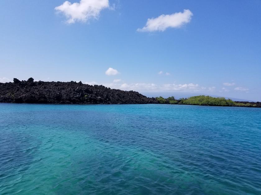 Mangrove lagoon scenery - blue sky and water