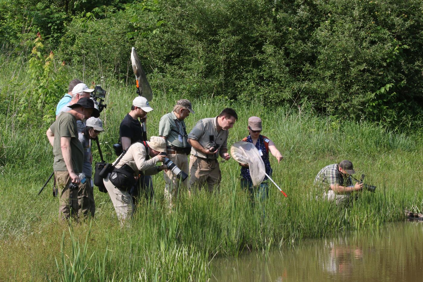 Odo-con field trip at Cooper Hollow