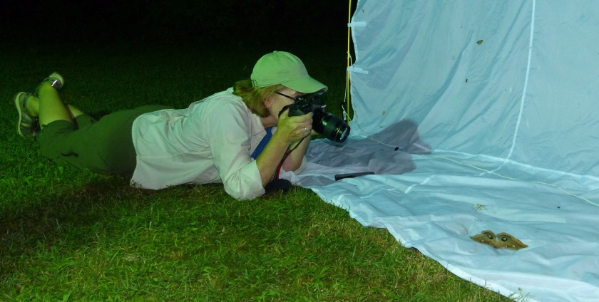 Kim photographing moths- by angie (2)