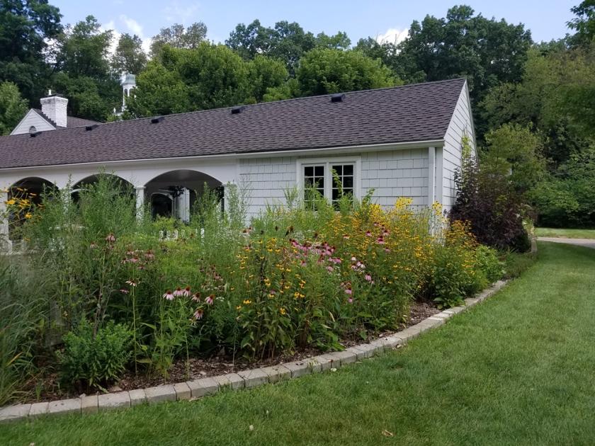 Garden at Wildwood visitor center - mid-August