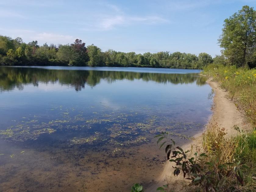 Lake view at Wiregrass