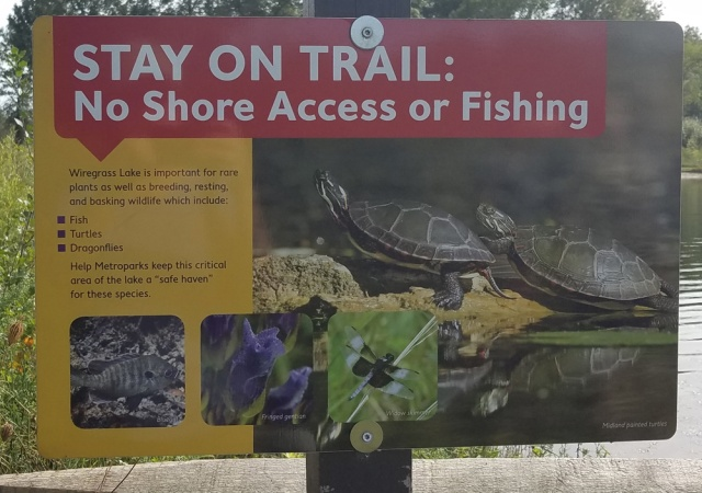 Stay on Trail sign at Wiregrass