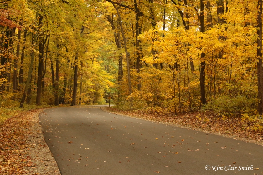 Fall at Secor v2 Kim Clair Smith