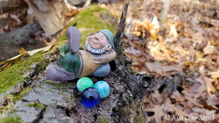 Gnome in the woods - fall leaves - blog