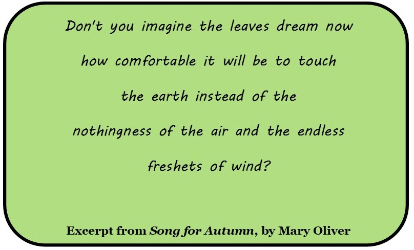 Song for Autumn excerpt
