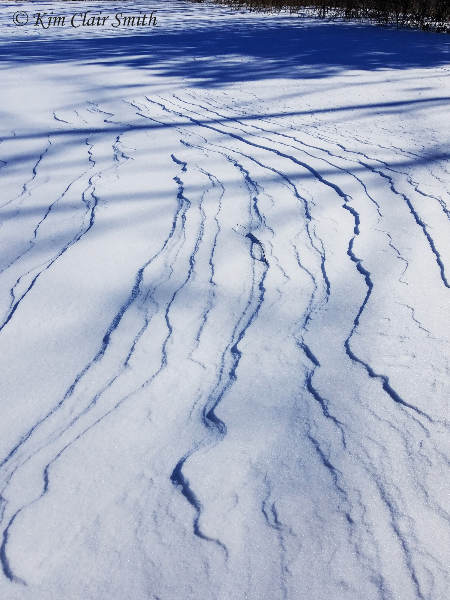 WInd patterns in the snow - blog