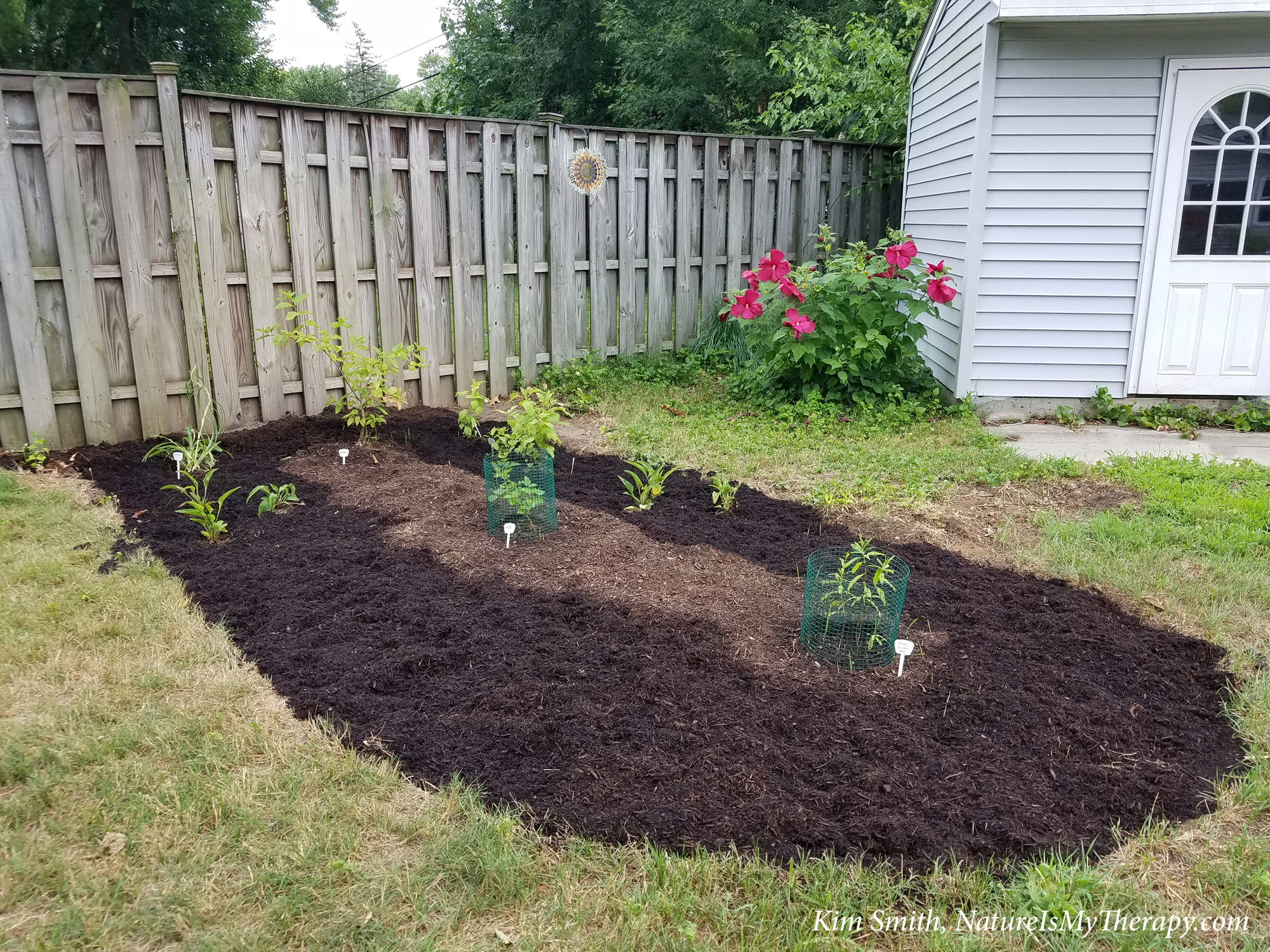 New garden bed July 29 2020 - blog - NIMT